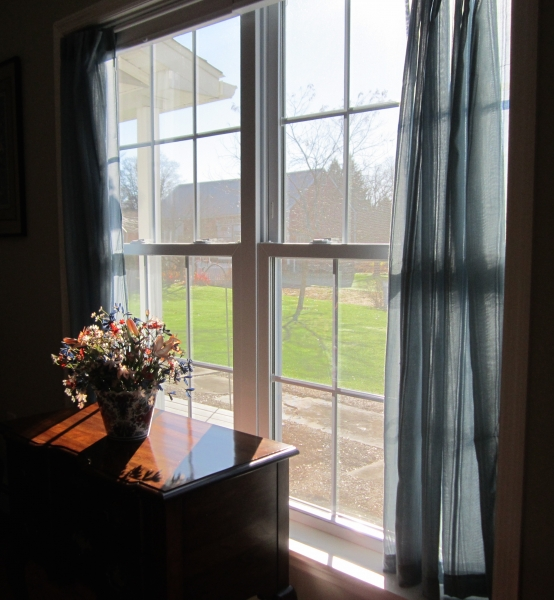 Signor - Window